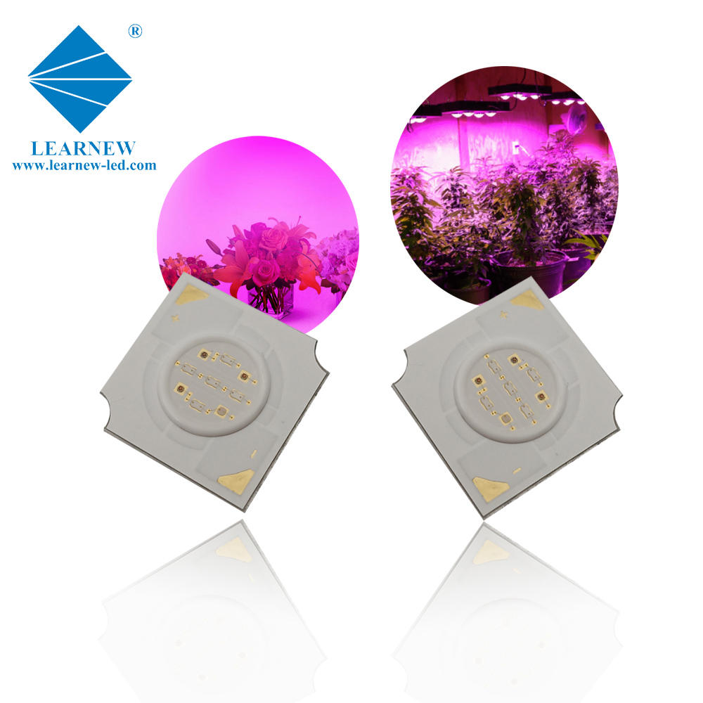 Learnew led cob grow lights best manufacturer for auto lamp-1