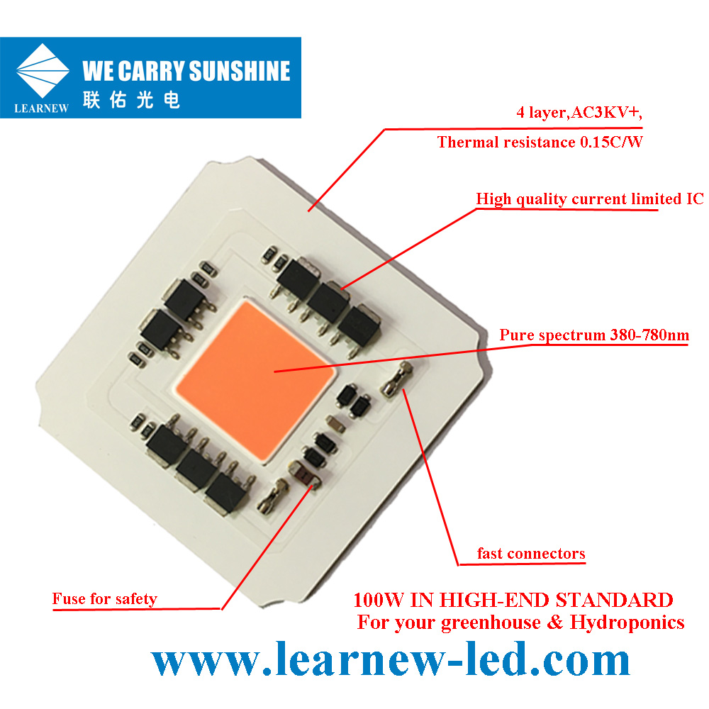 Learnew Array image262