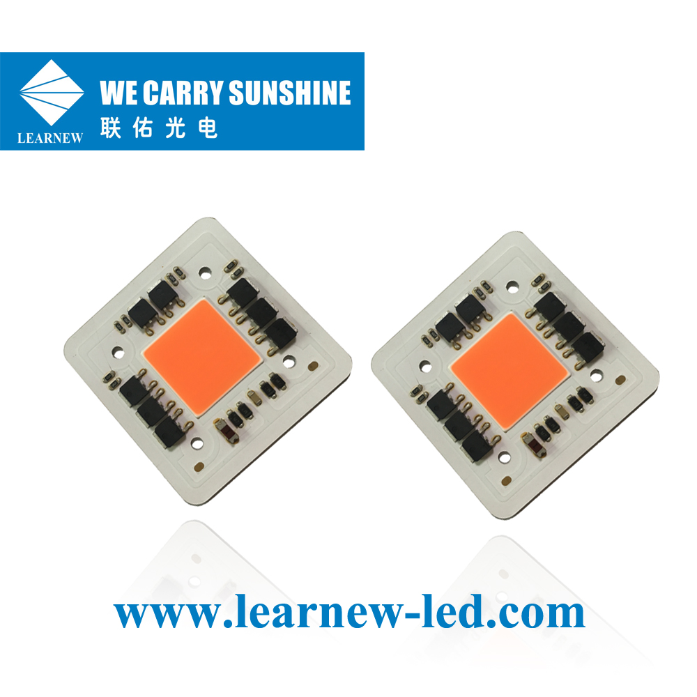 Learnew Array image125