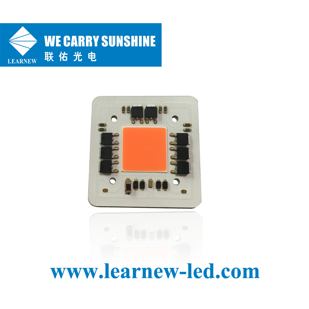 Learnew Array image91