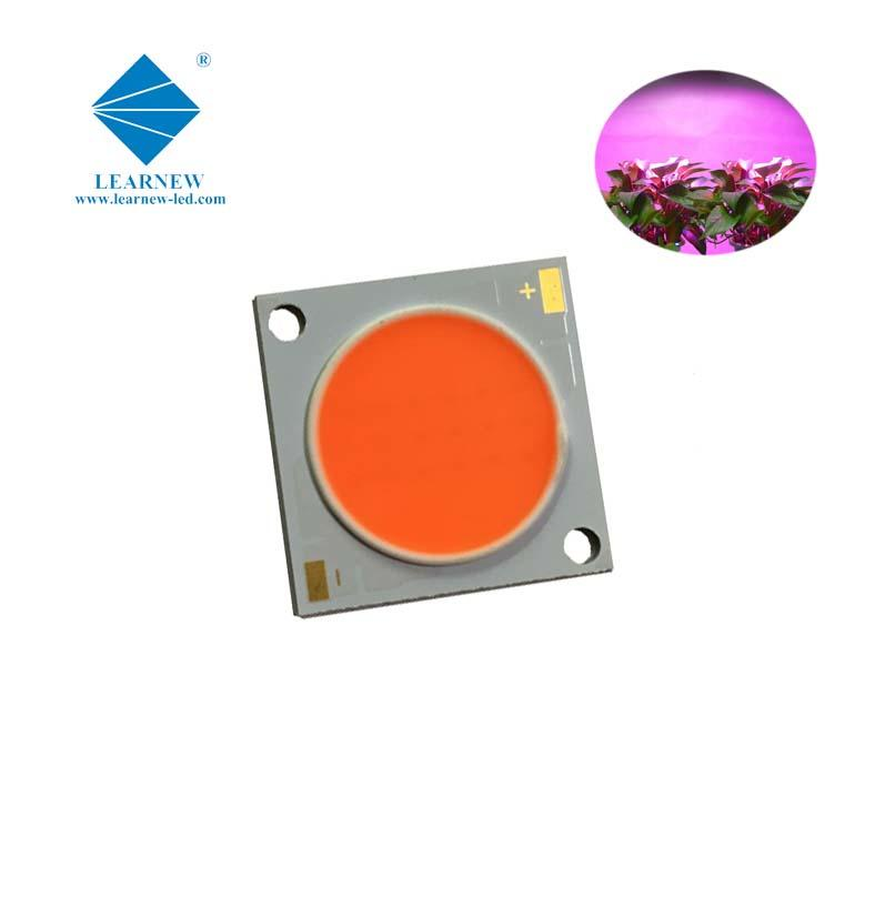 customized multi wavelength 380-780nm 50w dc35-38v 2828 cob led grow light chip